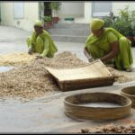 Cleaning of Herbs at Dr. Asma Herbals Factory