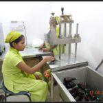 Sealing of Ayurvedic Syrup bottles