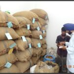 Marking of sorted raw material herbs in raw material section of Dr. Asma Herbals Factory
